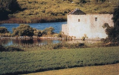 molino-victoria-ruinas.jpg